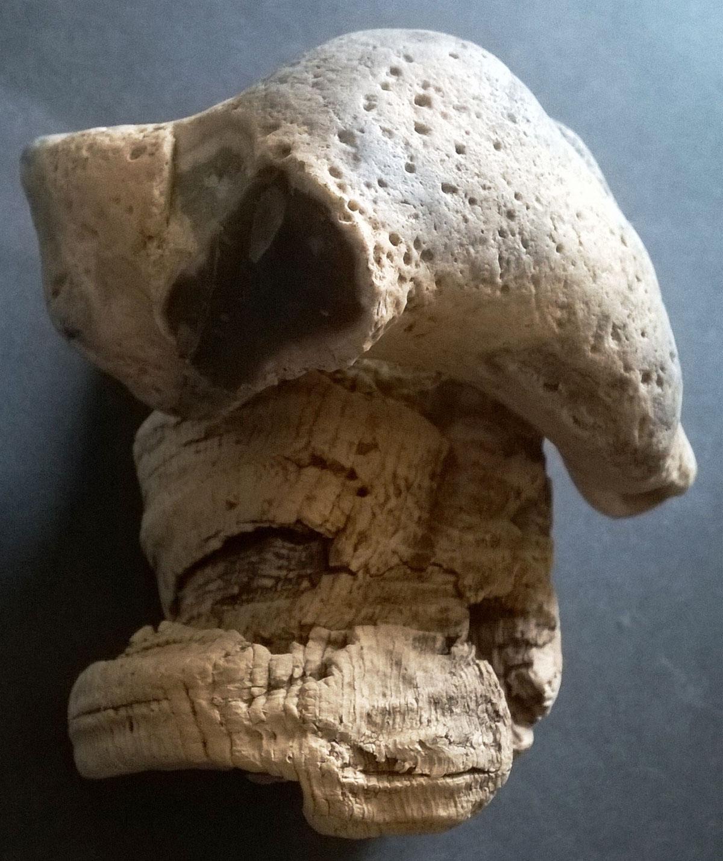 Crâne, agencement caillou et liège, 2019, 15 x 10 cm